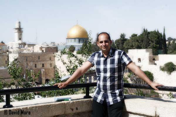 Durante mi vista en Mayo 2011 a Israel para estudiar las especies de termitas presentes en ese país