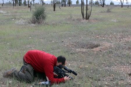 Filmando termitas (anacanthotermes) en Marruecos