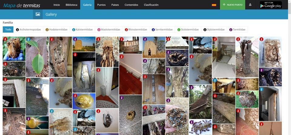 Imagen 7- Detalle de la Galeria de todas las imagenes asociadas a los puntos