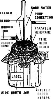 Fig. 3. Diagrama del sistema de alimentación artificial
