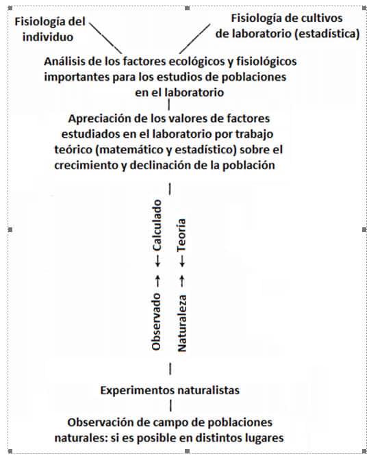 Figura 1. Esquema para investigar