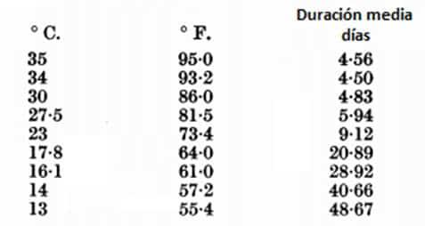 Tabla 2. Duración de la etapa de huevos de C. lectularius. Los datos para diferentes humedades se agruparon a cada temperatura.