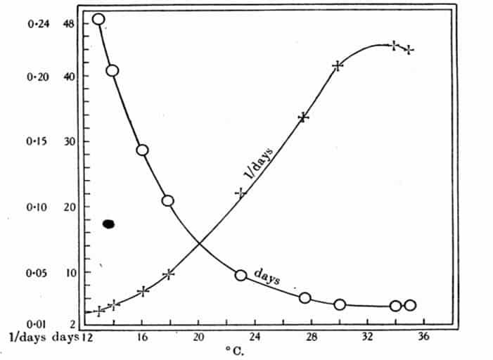 Figura 6. Duración media del período de oviposición hasta la eclosión de los huevos de chinches de cama a temperaturas constantes y los recíprocos de estos valores representados frente a la temperatura. Los datos en la Tabla 2. O = duración; + = recíproco.