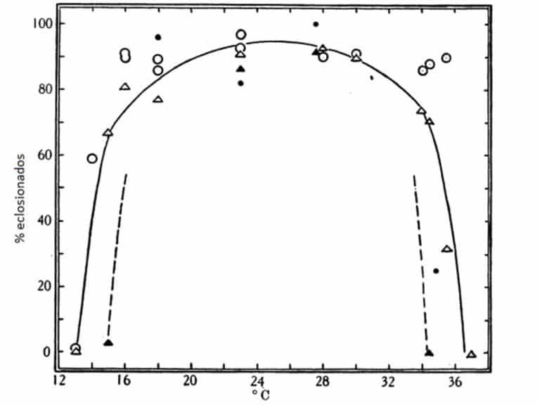 Fig 10. Porcentaje de huevos de C. lectularius puestos a 23 y 15 ° C y después se incubaron a diversas temperaturas y humedades constantes. Líneas dibujadas a mano a través de los puntos de las humedades bajas. Datos en las Tablas 12 y 13, pero los lotes que se incubaron a 100% de humedad relativa se omiten de la figura. O echado a 23 ° C, 75-90% R.H. durante la incubación. A Dejados a 23 ° C, 7% R.H. durante la incubación. • dejados a 15 ° C, 90-95% R.H. durante la incubación. ▲ dejados a 15 ° C, 7% R.H. durante la incubación.