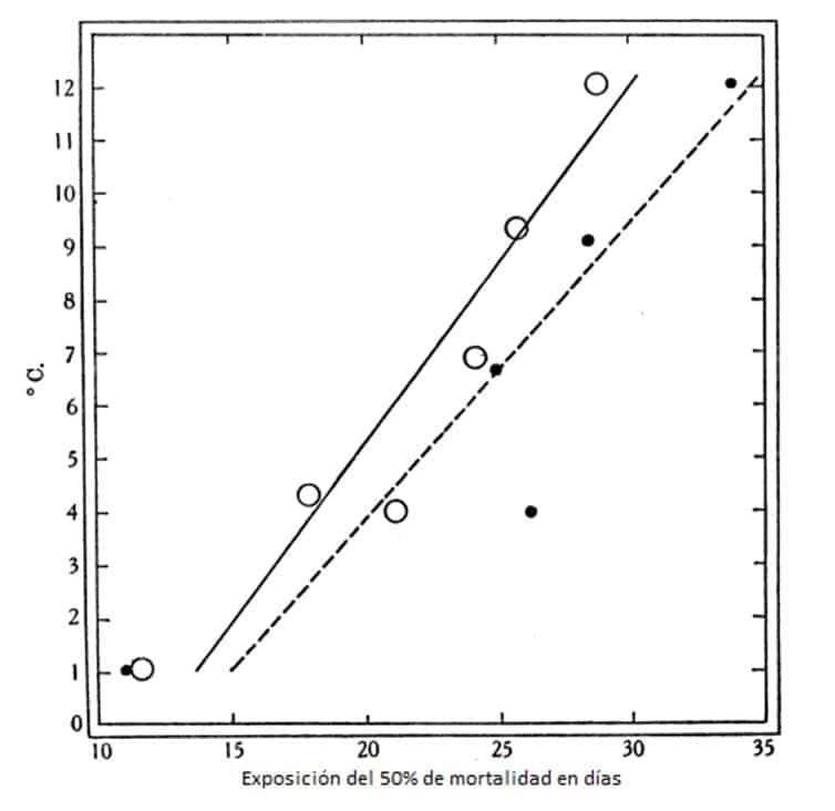 Figura 11. Exposición del 50% de mortalidad de huevos de chinches a diferentes temperaturas, pero con déficit de saturación constante. O = sat. def. a 5-1-5-8 mm. • = sat. def. o 2-4-2-9 mm. Datos de la Tabla 15 (asterisco).