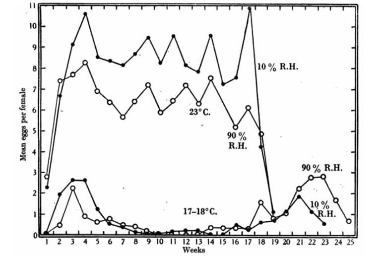 Figura 14. Media normal de huevos por hembra por semana a 23 y 17 a 18 ° C cuando los machos y las hembras cohabitan y se alimentan una vez a la semana. # = 10% R. H., O = 90% R. H. Datos en las Tablas 26 y 27.