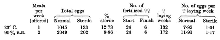 Tabla 31. Producción de huevos con la alimentación repetida. Machos y hembras mantenidos juntas después del primera agotamiento de los espermatozoides, y sólo se consideran las hembras fecundadas. Las hembras utilizan «eran las de la Tabla 30, fertilizadas por segunda vez después de que se agota la primera fertilización (ver Figs. 16 y 17)