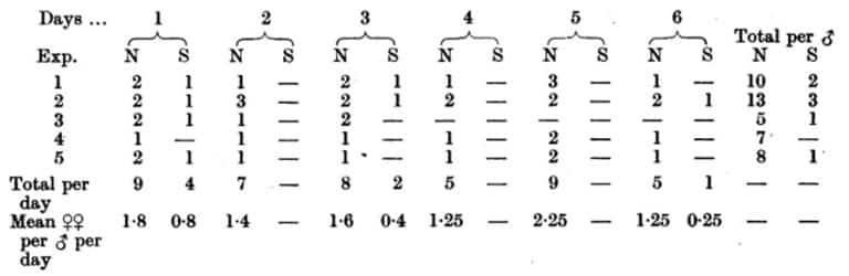Tabla 34. Número de apareamientos exitosos de machos individuales de 6 días a 23 ° C. Un solo macho y cinco hembras vírgenes, todos recién alimentados, se colocaron sobre la gasa en el extremo de un tubo de 2 x 1 pulgadas. Una vez cada 24 horas durante 6 días las hembras fueron reemplazadas por otras cinco vírgenes alimentadas. Estas hembras extraídas se mantuvieron, por separado en tubos, a 23 º C hasta que no pusieron más huevos. Esto mostró el número fertilizado. El macho se alimenta sólo una vez – en el primer día del experimento. Se realizaron cinco experimentos de este tipo. El cuerpo de la tabla indica el número de hembras, en cada lote diario de cinco, que puso huevos * ya sea normales o normales y estériles (N) o sólo estériles (S).