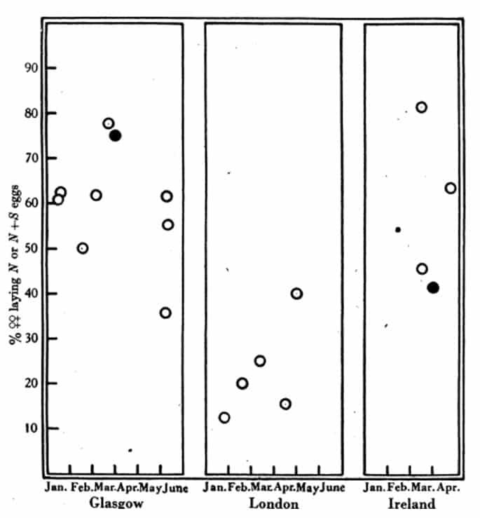 Figura 19. Porcentaje de hembras en muestras de poblaciones silvestres de chinches que pusieron huevos normales o una mezcla de normales y estériles cuando se alimentan y se colocan a 23 ° C. Los círculos negros son los valores para varias muestras muy pequeñas (J y S) agrupadas. Fecha de recolección, a lo largo de la abscisa. Datos en la Tabla 38.