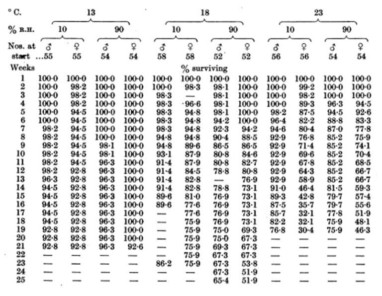 Tabla 40. Mortalidad entre machos y hembras de C. lectularius (lote de Beckenham); alimentados una vez por semana en conejo a 23 ° C. Mantenidos con gasa al final de un tubo de 2×1 ½ pulg, cinco machos y cinco hembras por tubo. Aproximadamente 2 semanas de edad al comienzo
