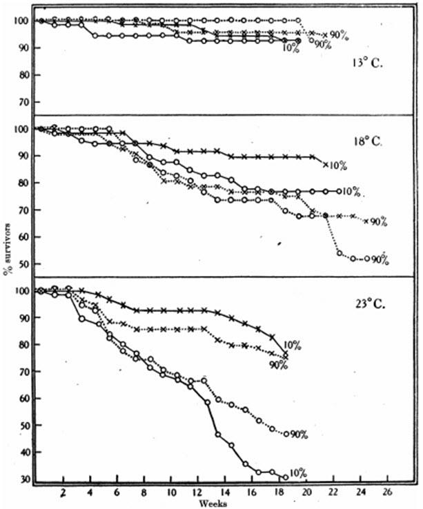 ig. 22. Mortalidad entre machos (x) y hembras (O) de chinches de cama a diferentes temperaturas y humedades cuando se alimentan una vez por semana. Cinco machos y cinco hembras en tubos de 2 x 1 1/2 pulgadas. Datos en la Tabla 40.