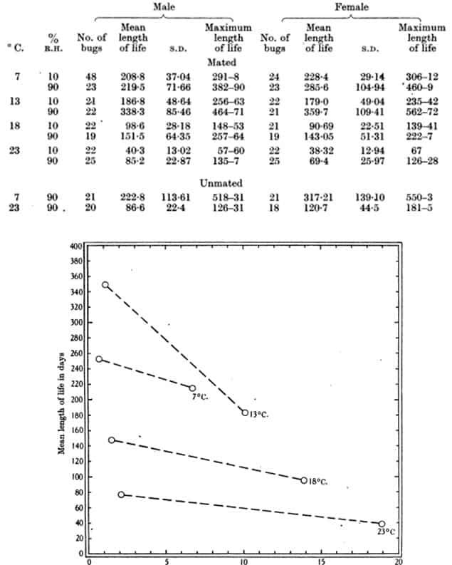 Tabla 41. Duración máxima y media de la vida en días de adultos de C. lectularius apareados y sin aparear alimentados en conejo. Duración máxima de la vida de, por ejemplo, 291-8, significa que la muerte ocurrió entre los días 291 y 298. Fechas de longevidad desde la alimentación – 4 días luego de la muda (Figs. 23 y 24).
