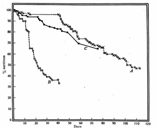 Fig- 28. Mortalidad de adultos de C. lectularius en la cabaña experimental. A. Machos y hembras: Temperatura media = 18-6 ° C, máx. 25-6 ° C, min. 8-9 ° C. Datos de la Tabla 45. B. Machos y hembras: Temperatura media = 12.3 ° C, máx. 16-1 ° C, min. 9-2 ° C. Datos de la Tabla 46. Chinches machos solo temperatura media = 13-7 ° C, máx. 17-1 ° C, min. 10.6 ° C. Datos de la Tabla 47. Véase también p. 426.