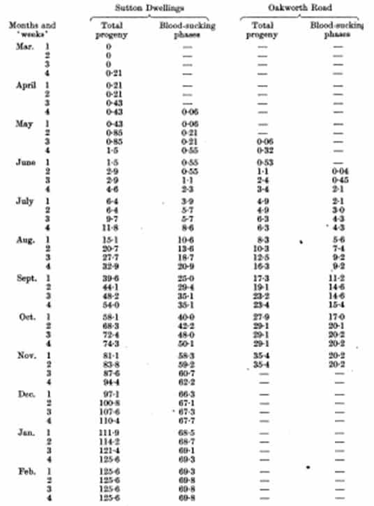 Tabla 59. Aumento de la progenie total y en las fases chupadores de sangre sólo en términos de los adultos y ninfas hibernadas originales (47 chinches)