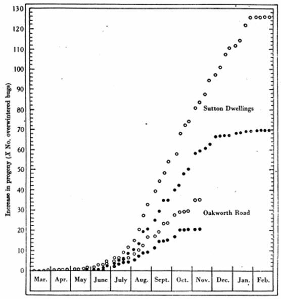 Figura 35. Crecimiento de la población hipotética de Oakworth Road y Sutton Dwellings como aumento de la descendencia en términos de población ocasionada durante el invierno de una población de chinches. O = progenie total, # = total de insectos chupadores. Véase la Tabla 59.