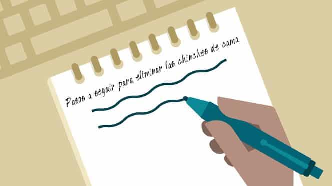 Toma nota de los pasos a dar para eliminar las chinches de cama