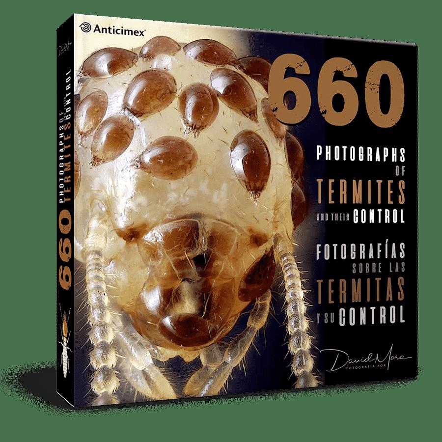 660 Fotografías sobre las termitas y su contro