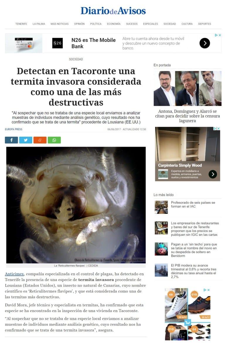 Noticia sobre las termitas de Tacoronte