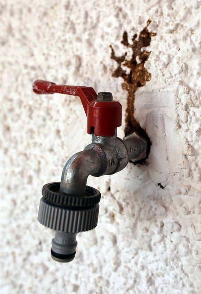 Las termitas utilizaron en esta vivienda las canalizaciones de agua para desplazarse por el interior de la vivienda.