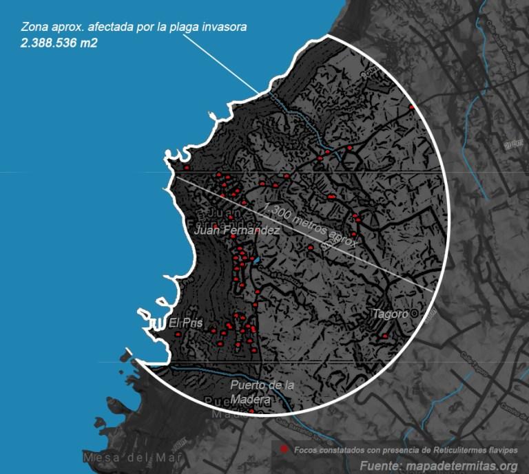 Zona «aproximada» en expansión de Reticulitermes flavipes en Tacoronte