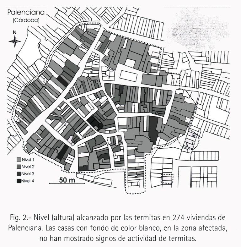 Fig. 2.- Nivel (altura) alcanzado por las termitas en 274 viviendas de Palenciana. Las casas con fondo de color blanco, en la zona afectada, no han mostrado signos de actividad de termitas.