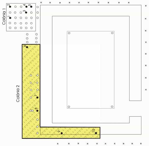 Figura 1. Territorio de forrajeo (zona sombreada amarilla) de una colonia deHeterotermes tenuis. Los circulos negros indican las estaciones de monitoro, y los circulos blancis indican las almohadillas de papel corrugado, y la x, indican las estacas de pino.