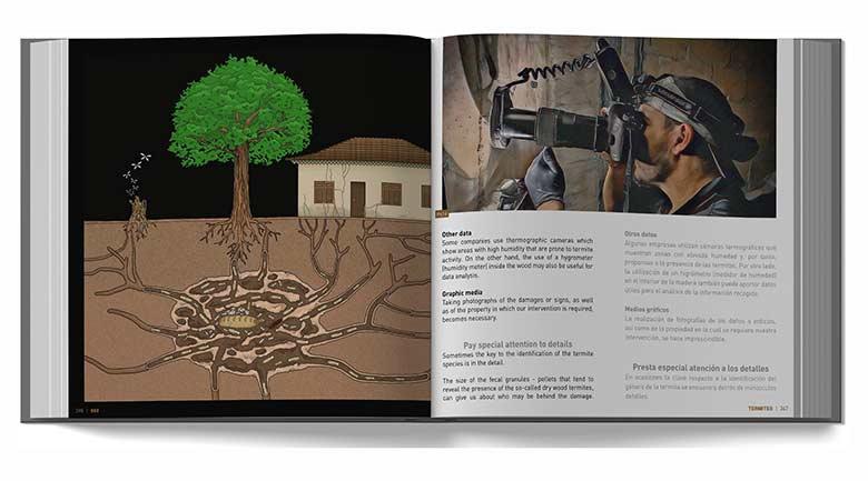 """Interior del libro """"660 Fotografías sobre las termitas y su control"""" por David Mora"""