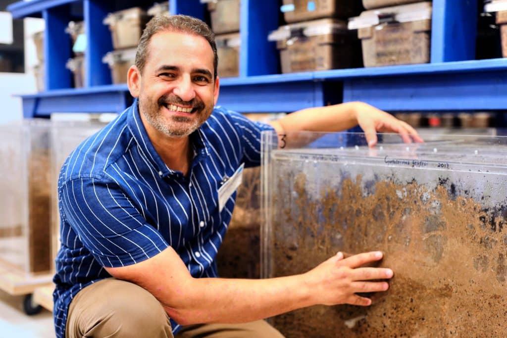 David Mora termitas