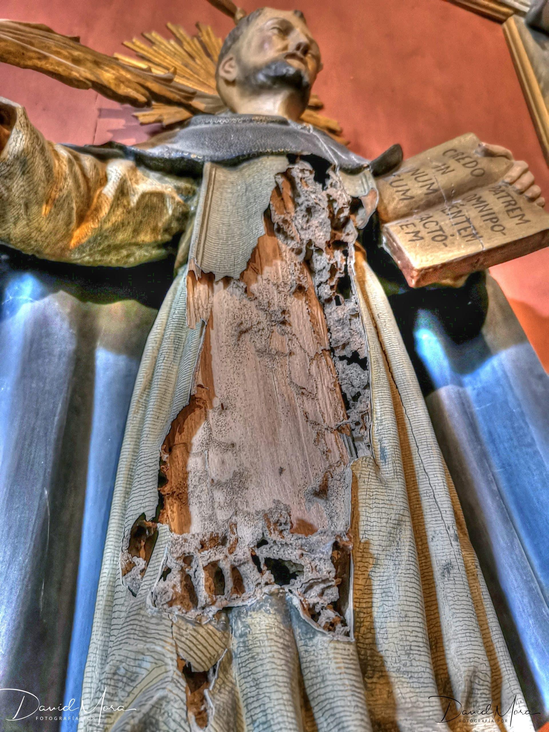 termitas en iglesias